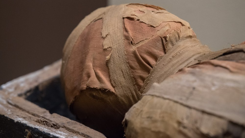 Egyptian Mummy Burial Site, Hieroglyphs
