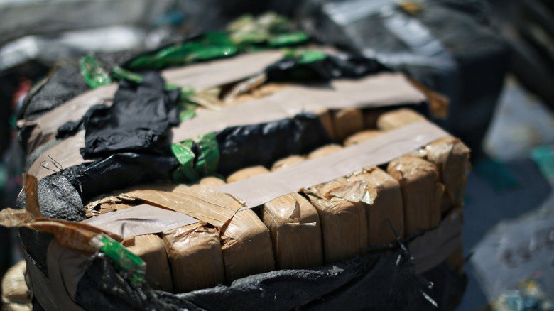 Seized and packaged cocaine
