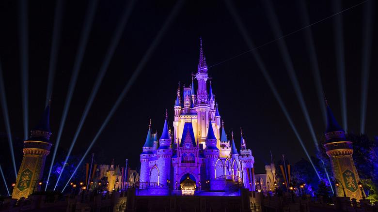 Disney castle at night purple lights