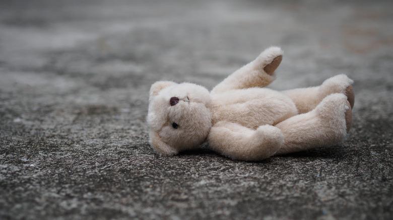 missing teddy bear