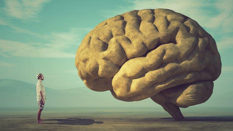 human meets brain giant