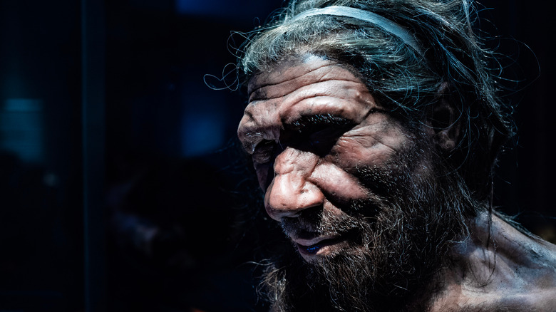 Neanderthal man recreation
