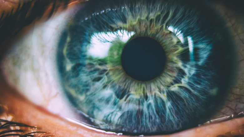 human eye closeup