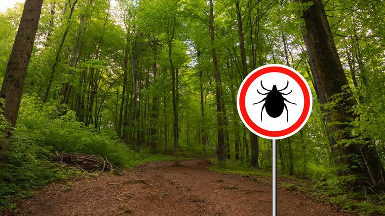 ticks sign on hiking trail