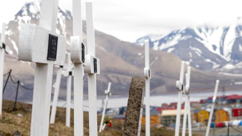 crosses in front of landscape