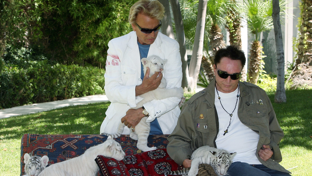Siegfried and Roy, 2008