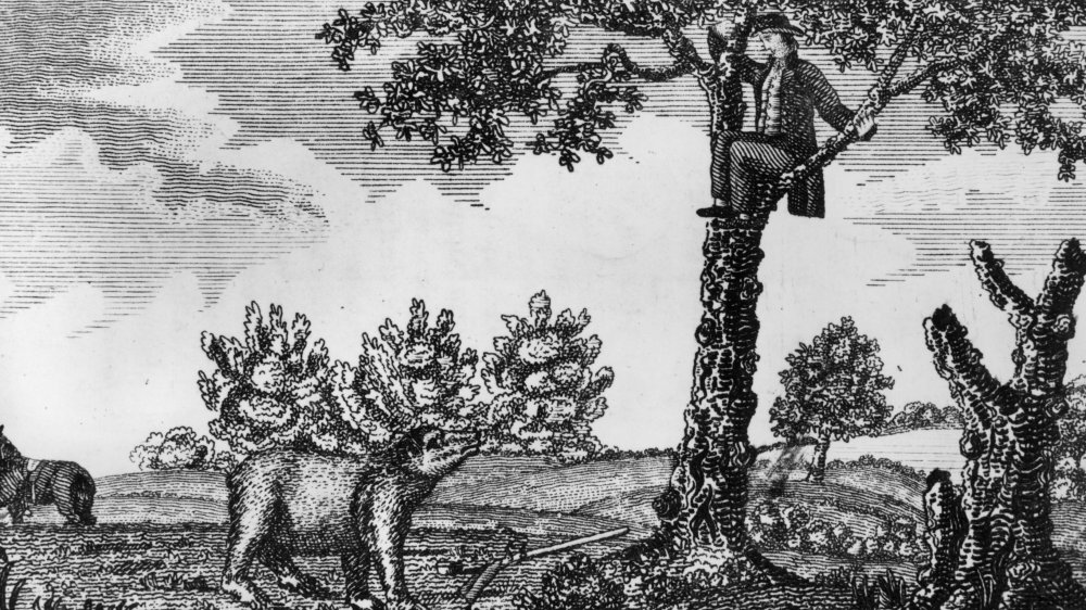 See, what you've got here is a guy hiding in a tree from a bear he just shot. The bear is none too thrilled, I can tell you that much, Jim. It's an old woodcutting depicting a near miss experienced on the Lewis and Clark expedition. Boy, I'll bet that fella didn't think he'd be up in a tree hiding from a bear when he woke up that morning, Jim!
