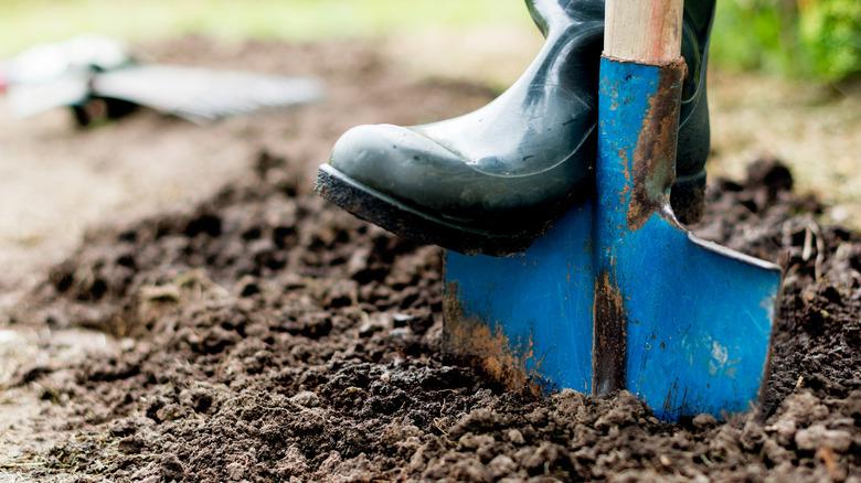 Ботинок и лопата