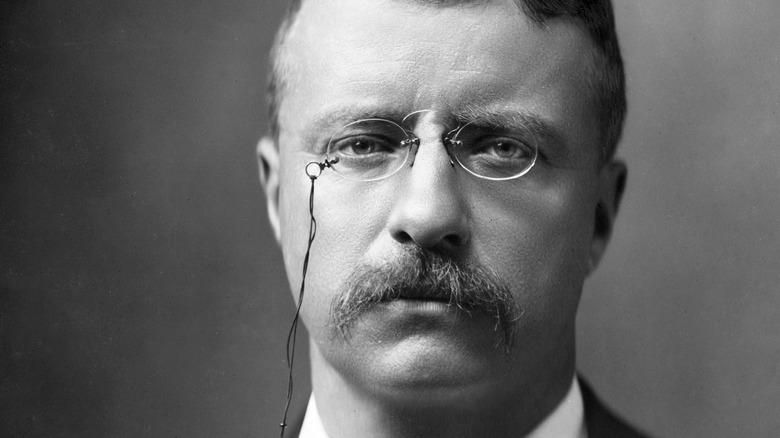 Theodore Roosevelt close up