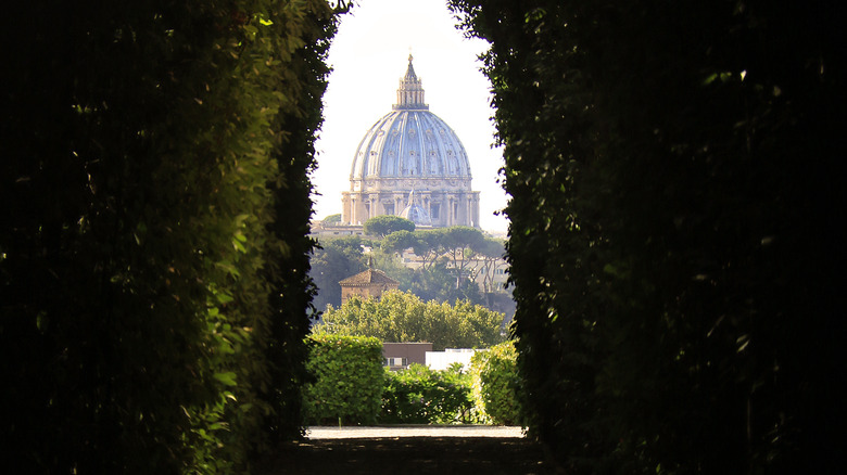 St. Peter's seen through a hedge