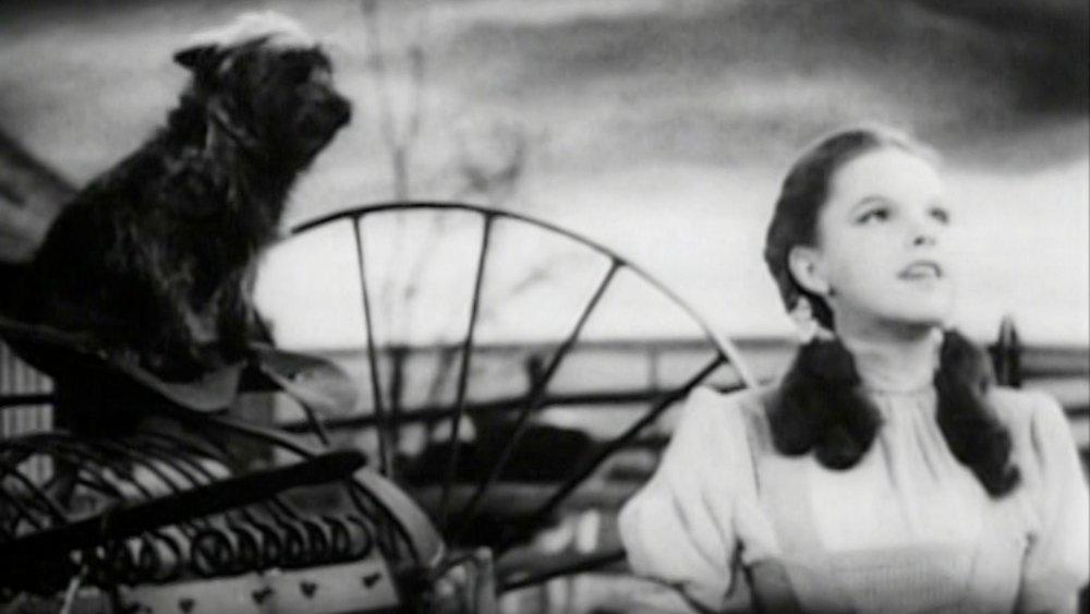 Judy Garland Wizard of Oz film