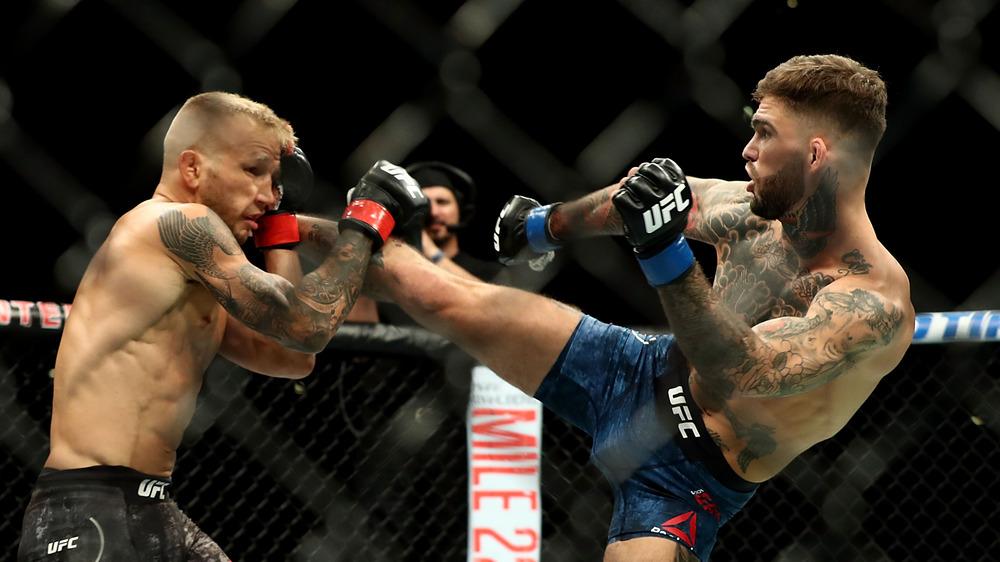 TJ Dillashaw blocks Cody Garbrandt's kick