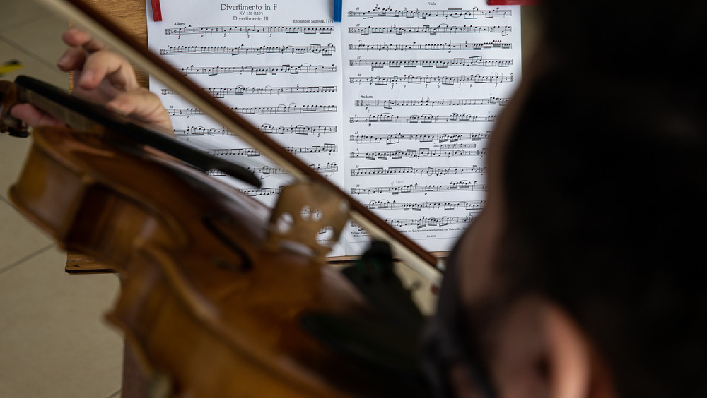 Violinist plays