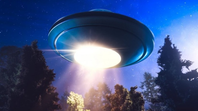 UFO in forest