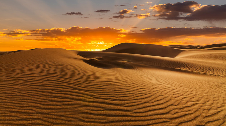 A desert dune at sunset