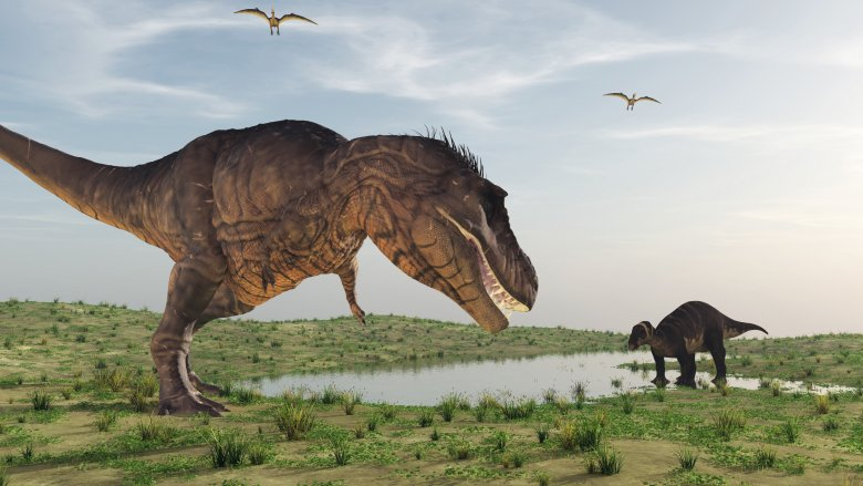 dinosaurs t rex