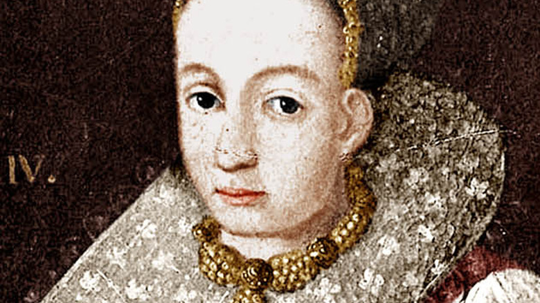 Portrait of Elizabeth Bathory