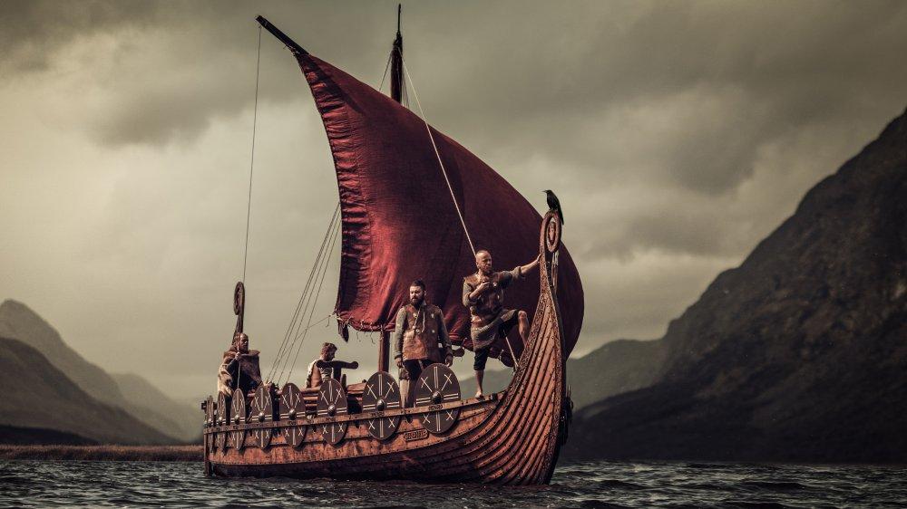 Vikings viking