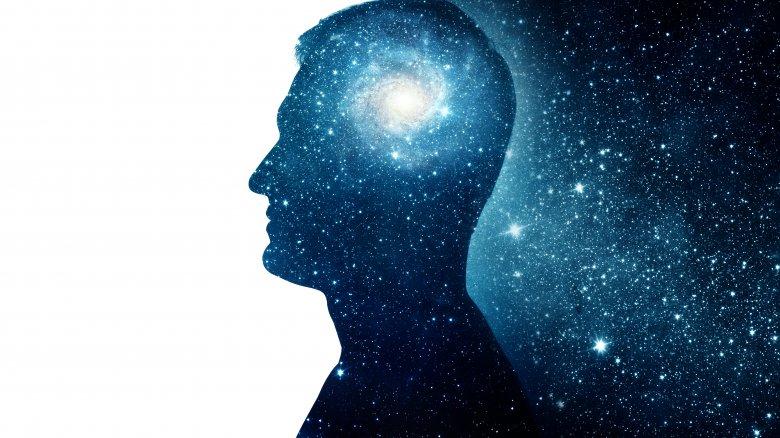 human brain space void