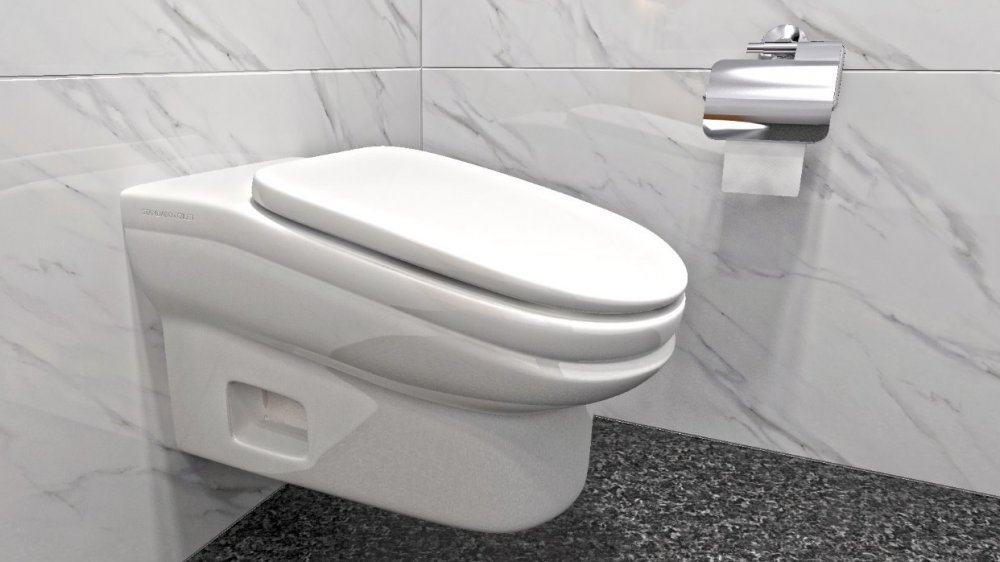 Sloping toilet