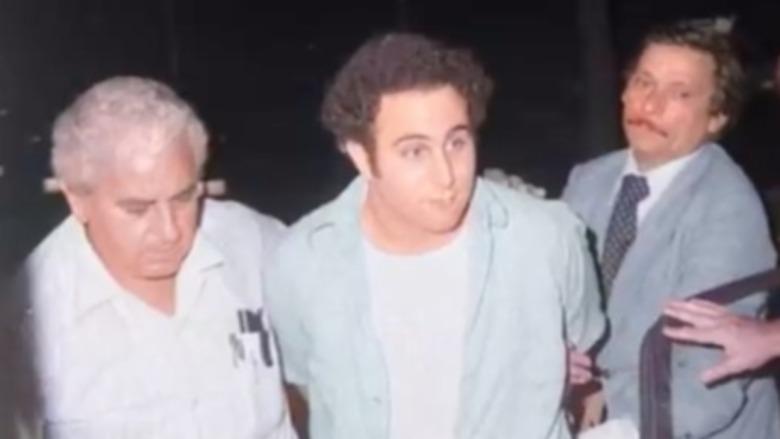 David Berkowitz in custody
