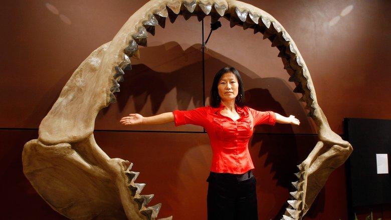 huge prehistoric animal teeth