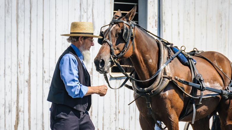 amish man and his horse