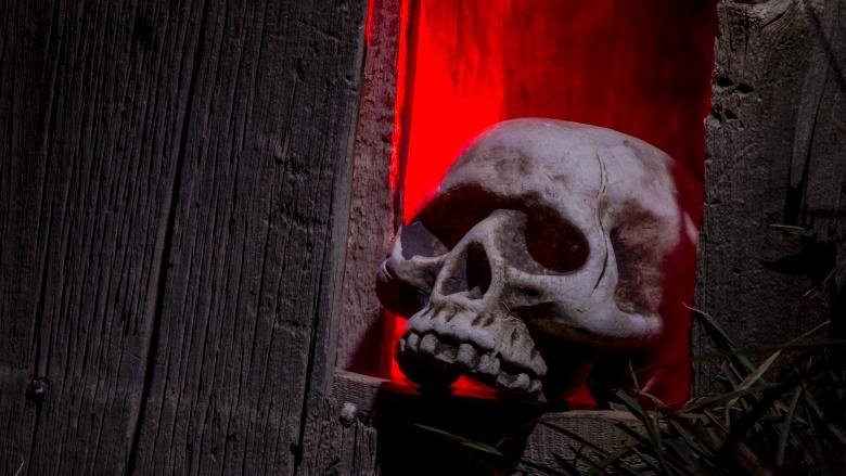 haunted house skull