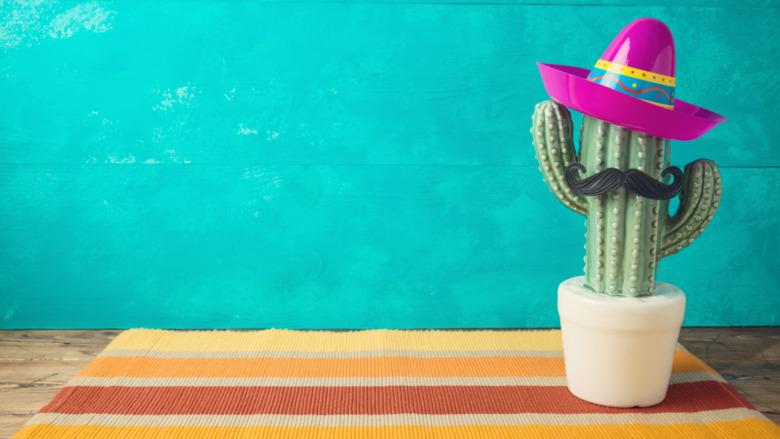 Cactus in a sombrero