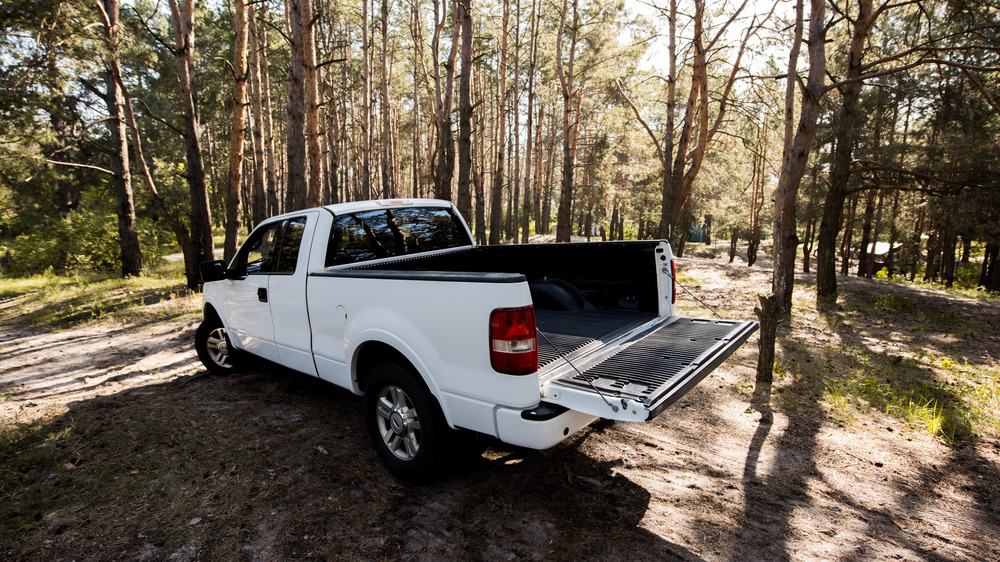 Truck abandoned in forest