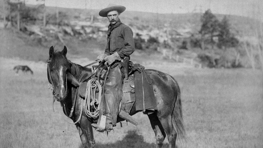 A cowboy circa 1888