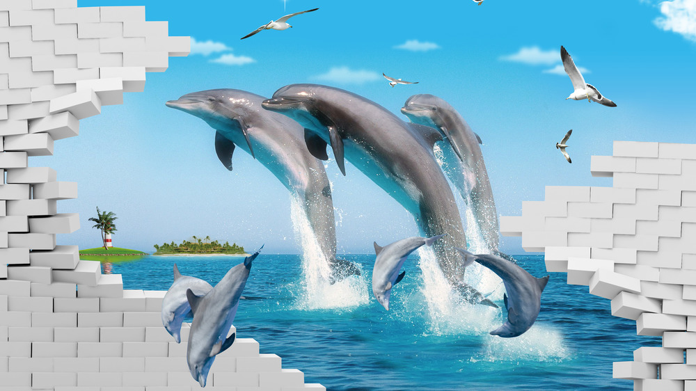 3D dolphins jumping