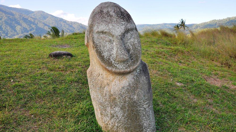 Stone statue, Bada Valley, Sulawesi, Indonesia