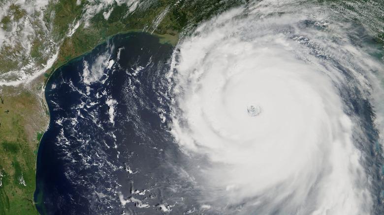 Hurricane Katrina satellite shot