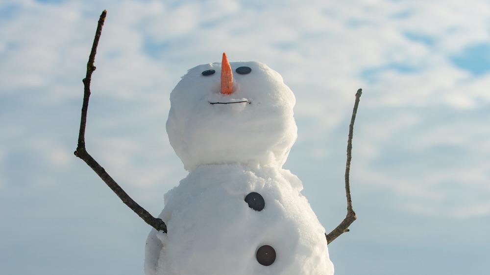 A snowman seeking freedom in the sky