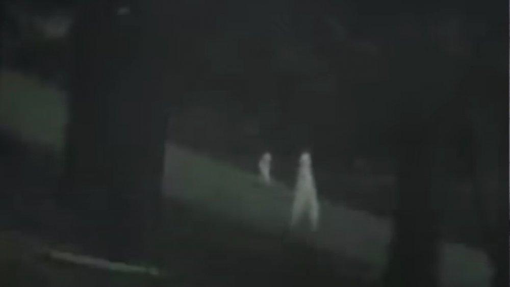 nightcrawler footage