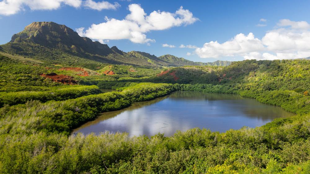 Hawaii's Alekoko Fish Pond