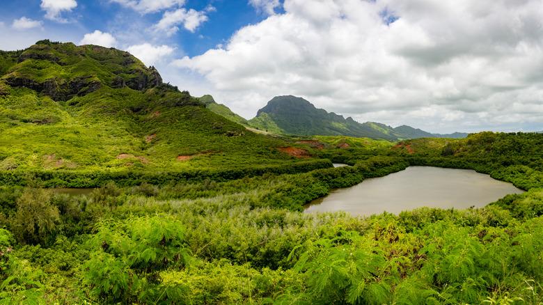 Menehune Fishpond in Hawaii