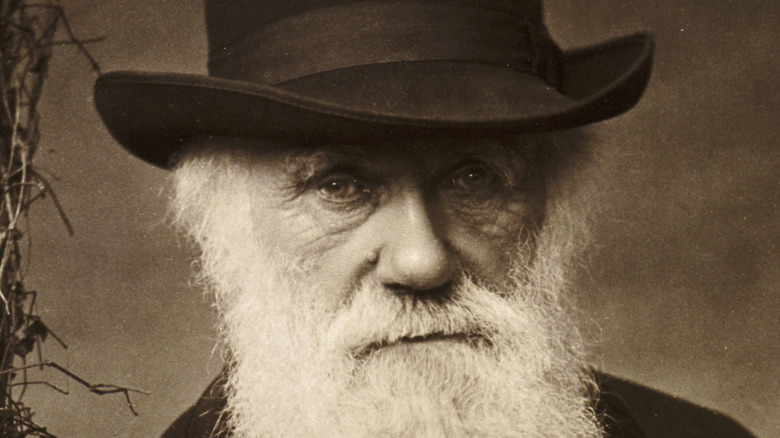 Charles Darwin standing photograph