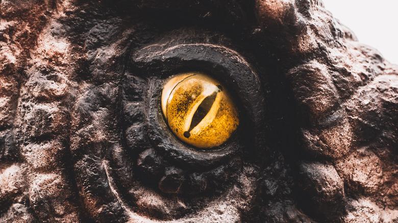 up close of yellow tyrannosaurus rex eye