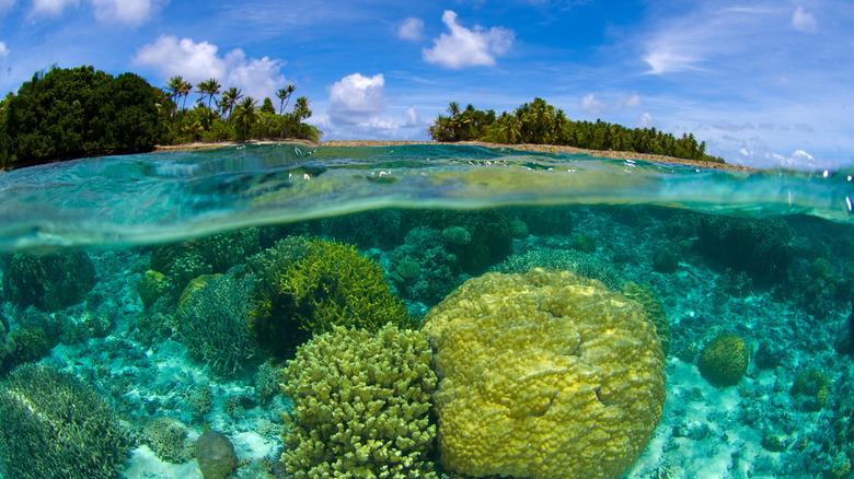 mysterious island marshall islands