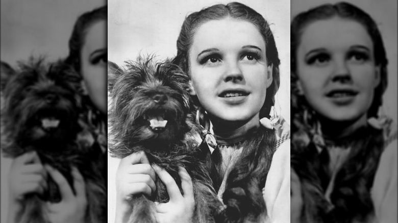 Toto and Dorothy The Wizard of Oz