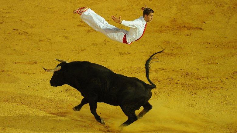Bull leaping