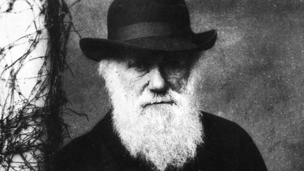 Charles Darwin had a beard