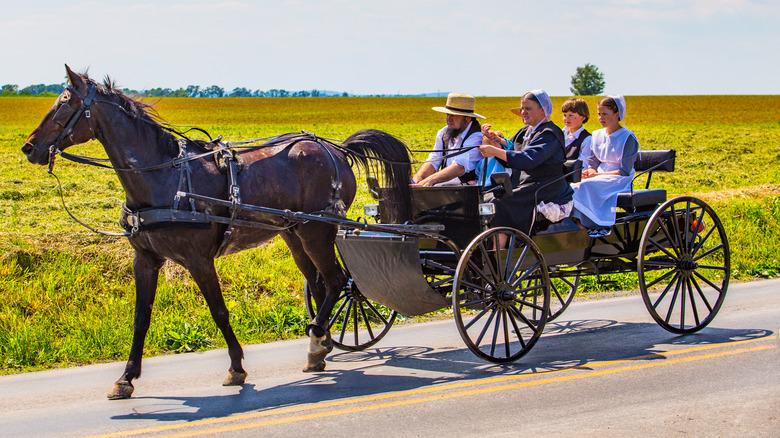 Amish family riding a wagon