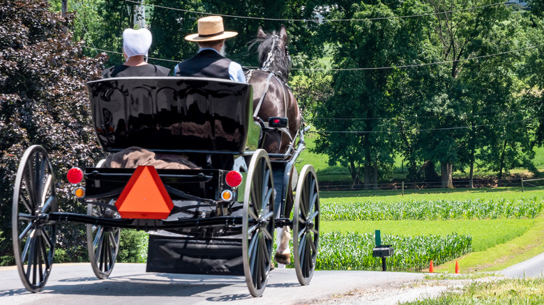 Amish buggy traveling down the road