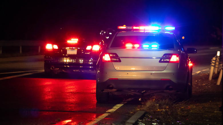 police car on road side