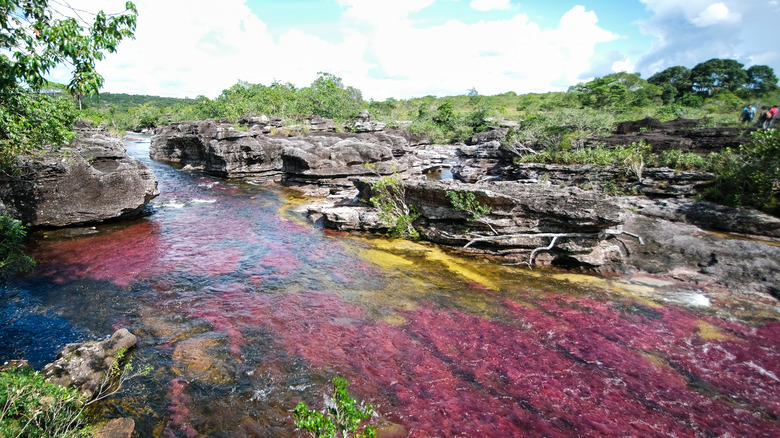 view of Caño Cristales