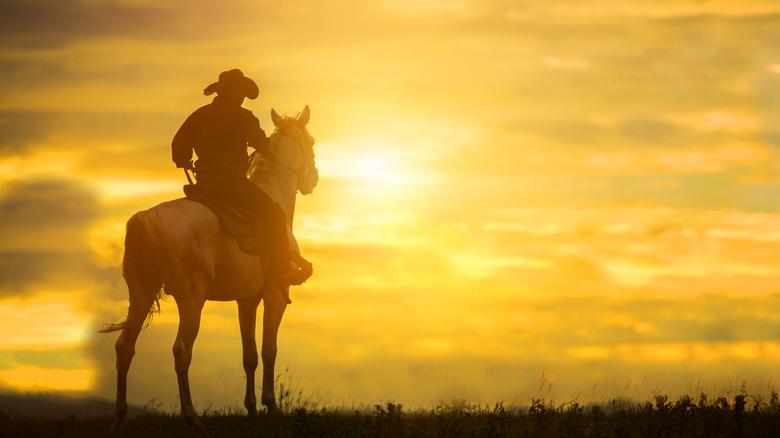 Cowboy horseback looking at sky