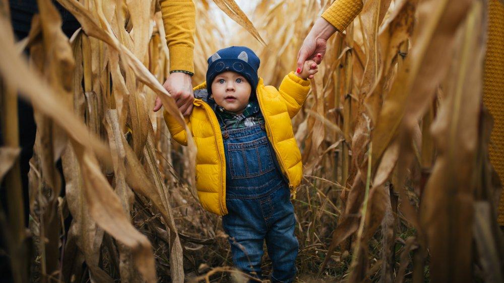 Corn Maze, Baby